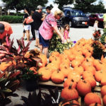 Simply Events Presents The WC Fall Festival At The Grove Oct.  28-29!