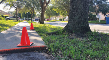 Sidewalks Awaiting Repairs In Some New Tampa Neighborhoods